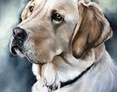 Custom Pet Portrait, Dog Portrait, Animal Art, Custom Paintings, Oil Painting, Custom Artwork, Custom Dog Painting,16x20