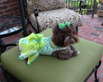 SAMPLE SALE:   Garden Party 2014 Dog Dress