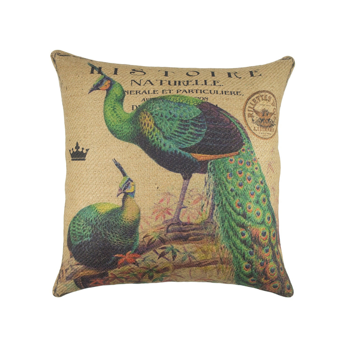 Throw Pillow Peacock : Chandeliers & Pendant Lights