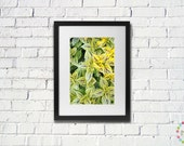 Bright Leaves Photography - FREE shipping to USA nature lovers photo pattern print light green dark purple macro close up home decor eco