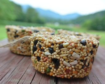 Bird Seed Feeder Ornament, Natural Decoration For Bird Watchers and Lovers, Primitive Home, Gift, Favor For Outdoor Wedding or Kids Parties,