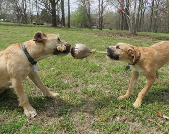 Coconut Tug Toy - All Natural - Dogs Love Coconuts