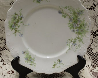 Subtle Porcelain Plate - Johnson Brothers Manufacturers, England