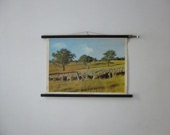Sheep Farmhouse Pull Down Chart - New South Wales Australia Prairie Landscape Wall Photo - Travel Poster