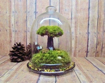 Tree of Life Terrarium Live Moss Fairy Garden Raku Fired Tree in Jar with Glow in the Dark Mushrooms- Handmade