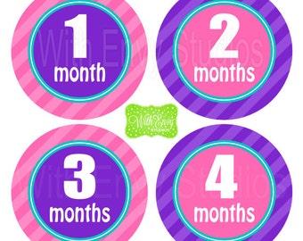 Baby Monthly Milestone Stickers - Baby Bodysuit Stickers - Monthly Baby Stickers - Pregnancy Stickers - 005