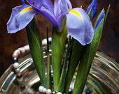 Domestic Violence Charity Print, Iris, Flowers, Purple, Rustic, Vintage Style Photo, Nature, Photographic Print, Kristine Cramer Photography