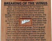 Breaking Of The Wings Plaque