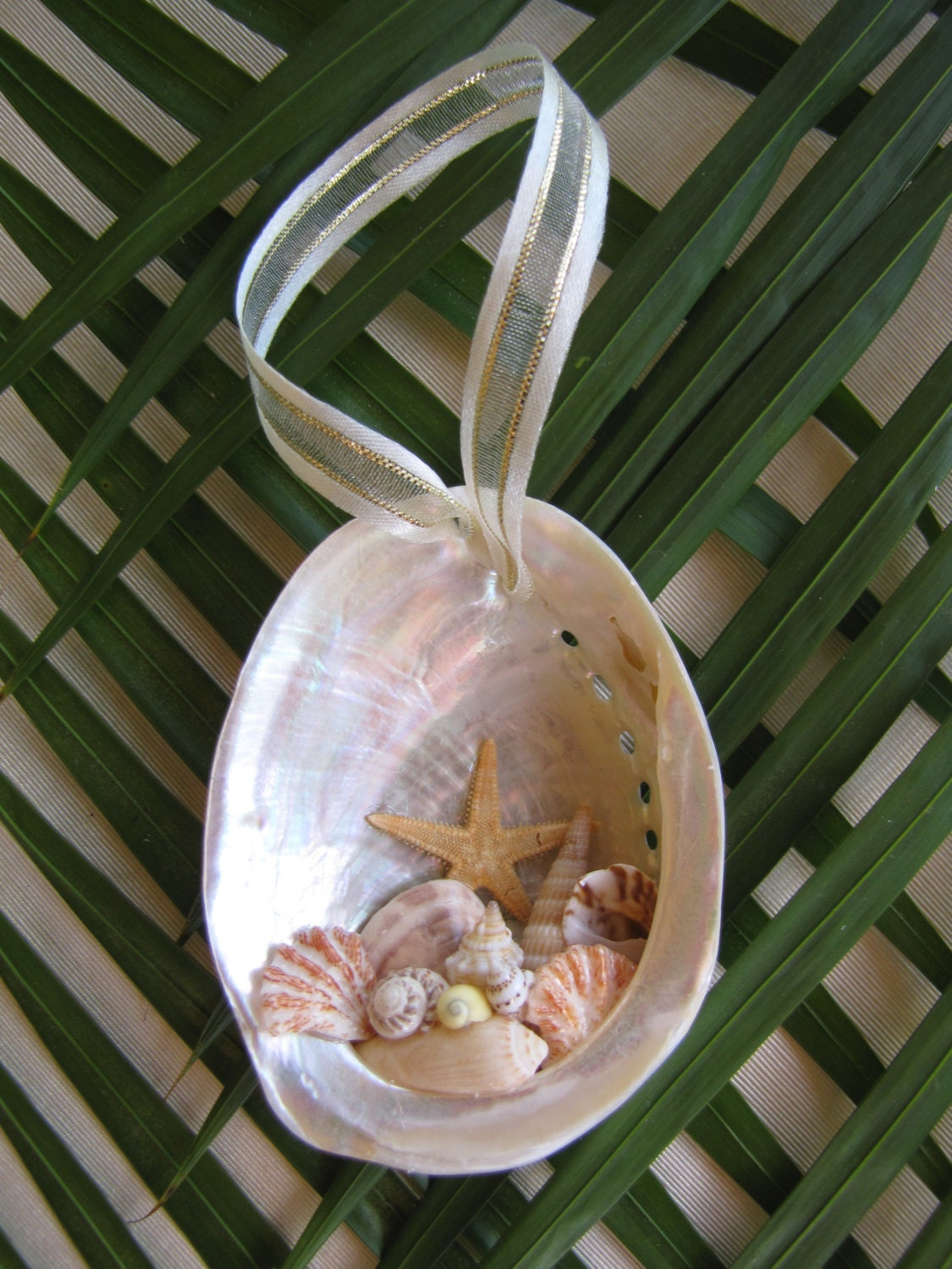 Free shipping abalone shell ornament beach decor christmas - Shell decorations how to make ...