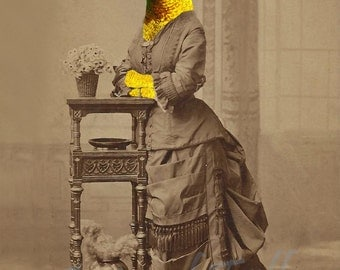 A VISION in YELLOW & RED Hummingbird Lady altered art Print anthropomorphic Victorian steampunk bird Altered Antique Photograph fashion