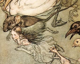 "Arthur Rackham ""The Pool of Tears"" 1907 Reproduction Digital Print Animals Alice In Wonderland"