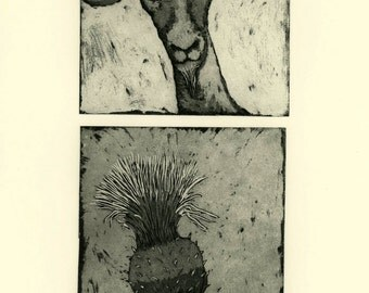 etching, Little Goat and Thistle, goat, portrait, black, cream, country decor, printmaking, home interior, country cottage, farm kitchen