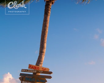 Paradise Beach Palm Tree Sign Post. Long Way from Home. 8 x 10 inch Photography Print