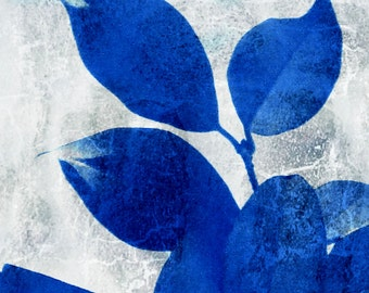 Nature, Plant, Leaf Photography, Cobalt Blue and White Fine Art Photography, Royal Blue Wall Decor