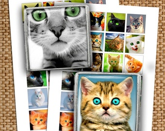 Cats Square Images 1x1 inch, 1.5x1.5 inch for Glass Pendants Printable Images Digital Collage Sheet  Instant Download
