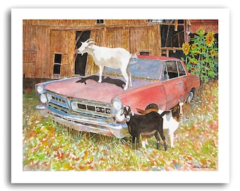 Goat Art 1965 Pontiac GTO Sunflowers Barn Prints Signed and Numbered