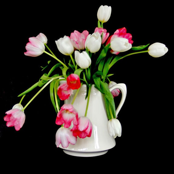White Vase Pink and White Tulips Black Background Square