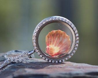 Sunrise shell Jewelry - Floating Glass locket with Hawaiian Sunrise shell - magnetic locket - seashell jewelry