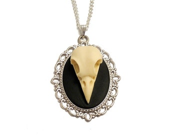 3D Raven bird skull necklace Cameo taxidermy gothic goth steampunk pendant