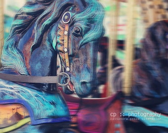 carousel horse - limited edition photograph
