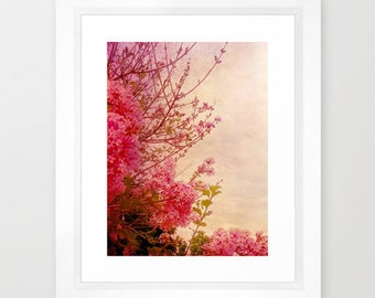 Pink lilacs photo print- flower photography- pink- lilacs- dreamy photo- pretty home decor- vintage look