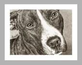 Pit Bull Dog Art No. 3 - 5 Blank Note Cards With White Envelopes - Ranlett