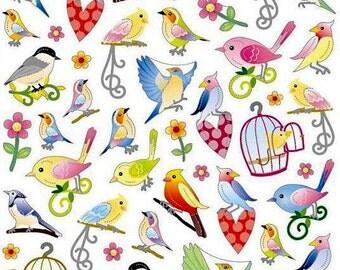 The Beauty Of Birds Stickers • Bird Lover • Bird Sticker • Backyard Bird • Birds • Bird Watcher • Bird Love (SK4225)