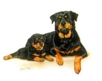 ROTTWEILER Puppy and Mom on TWELVE Identical 6 inch Fabric Squares for Quilting and Sewing. White Background.