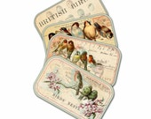 Bird Nest Gift Tags, Bridal Shower Gifts, Cottage Chic Spring time Gift Tags, Nature Assorted Bird Tags,  Pale Pink and Green Gift Tag