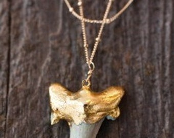 Gold Shark Tooth Necklace