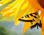 Yellow Butterfly Art Watercolor Painting Print by Cathy Hillegas, 7x10, floral watercolor print, Sunflower Art, yellow orange green blue art