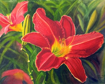 Red Daylily Art Watercolor Painting Print by Cathy HIllegas, 16x21, red, yellow, green, blue, purple, watercolor floral