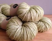 Sweater's Worth of Forage Superwash Merino Worsted Hand Dyed Yarn