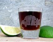 Texas Armadillo Single Sandblast Etched Shot Glass