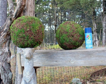 """CLEARANCE:Moss Balls-Topiary Balls-Scattered Moss and Angel vine balls-6"""" and 8""""-Beautiful Hand made ball of Preserved Moss-Wedding..."""