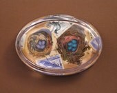Lavender and Blue Egg Bird Nests Postage Collage Oval Glass Paperweight