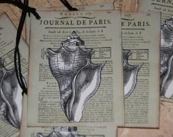 Paris Sea Shell Tags