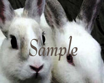 Two Bunnies 8x10 Poster Instant Download