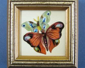 Antique Framed Butterflies Victorian Naturalist Butterfly Moths Paper Die Cut