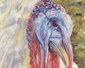 "Tom Turkey, 6""x6"" Watercolor"