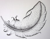 Floating black Feather, stylised  -- original ink drawing