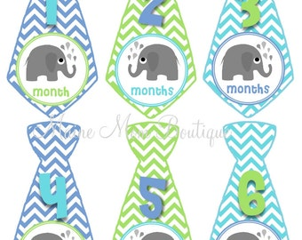 FREE GIFT, Baby Monthly Stickers, Baby Boy Month Stickers, Baby Boy Gift, Elephant Stickers, Animal Nursery Decor, Elephant Photo Prop