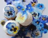 45 blue yellow edible pansy flowers - edible flowers -  wedding cake toppers - wedding favors - edible cupcake toppers by Uniqdots on Etsy