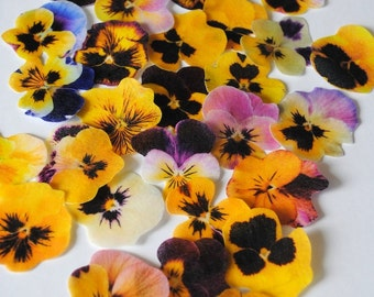 20  edible cake decoration - biodegrdable confetti - edible flowers -  wedding cake toppers - edible cupcake toppers by Uniqdots on Etsy