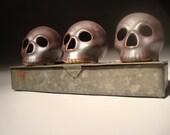 Skulls With Box