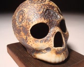 Craters Textured Skull