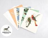 Aerofauna - Set of 8 postcards