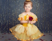 Belle dress inspired costume dress 3t