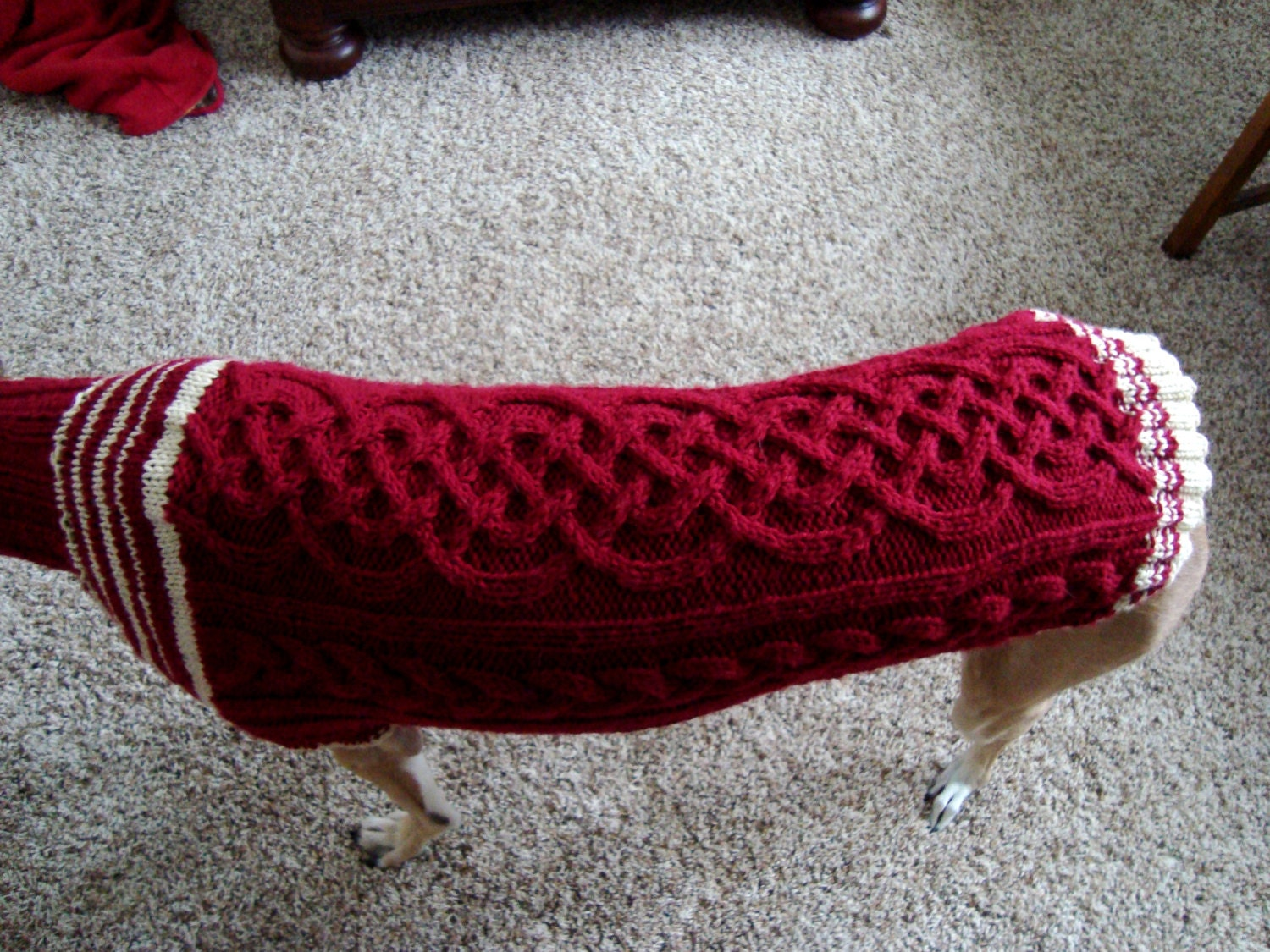 Knitting Patterns For Greyhound Dogs : dog/ greyhound sweater knitting pattern PDF file ONLY
