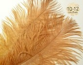 "10 pcs - BRONZE - 10-12"" inch - Ostrich Feather Plumes - Dyed Drabs Feathers"